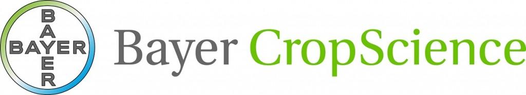 BCS_Logo_colori_1 riga